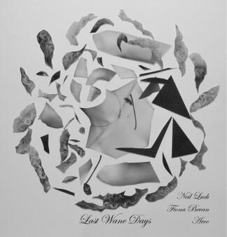 Neil Luck, Fiona Bevan & ARCO: Last Wane Days