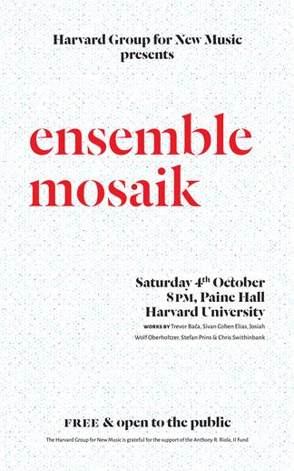 HGNM ensemble mosaik poster